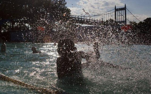 夏のプール、ワイン、その他のホットな楽しみ