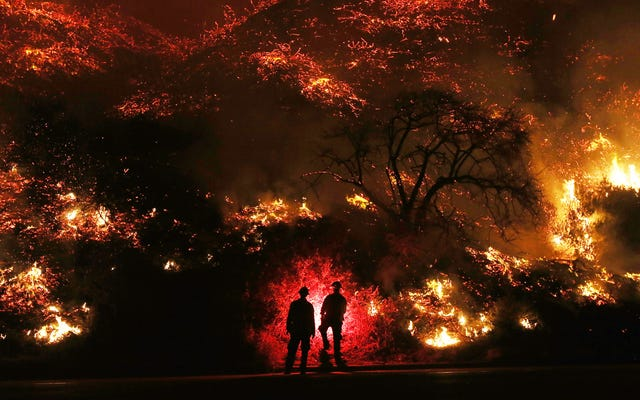 あなたの家が山火事によって破壊された場合の保険の適用範囲について知っておくべきこと