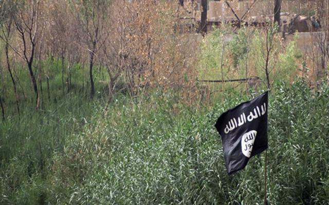 ISISを宣伝するために50以上のTwitterアカウントを使用したとして逮捕されたティーンエイジャー