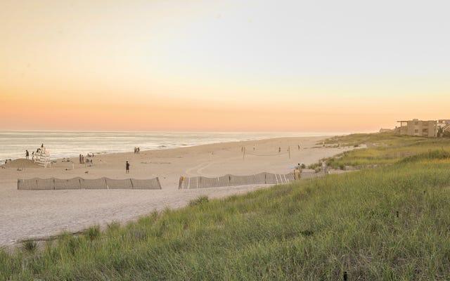 Les résidents riches des Hamptons ont peur des `` rejets d'énergie violents '' du câble de parc éolien offshore