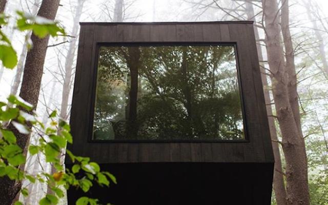 คุณจะจ่ายเท่าไหร่เพื่อนั่งในกล่องในป่า?