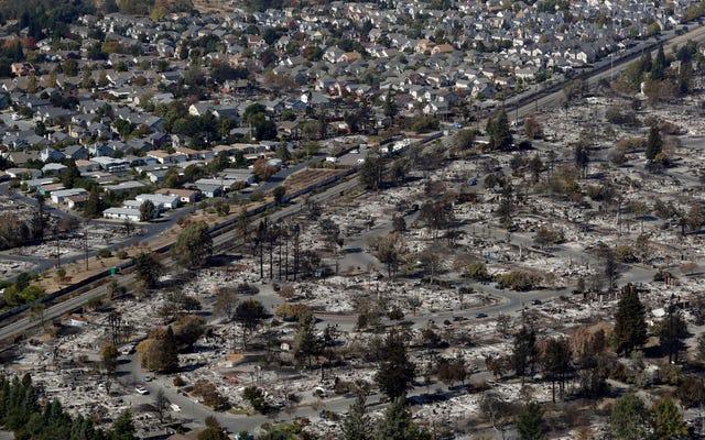 Liczba ofiar śmiertelnych pożarów w Północnej Kalifornii wzrasta do 38