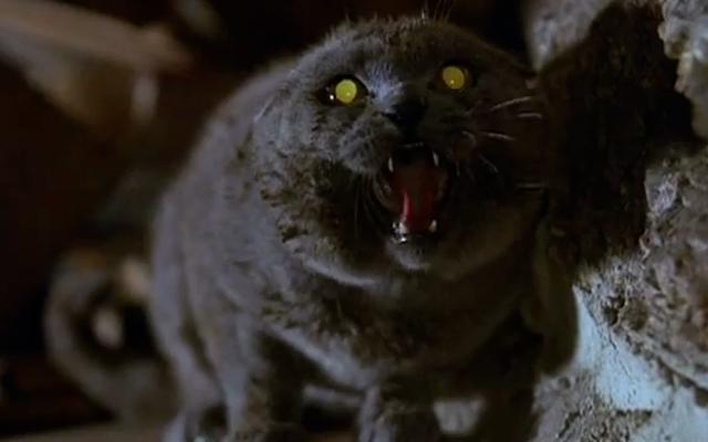 Paramount tìm đạo diễn Starry Eyes cho bản làm lại Pet Sematary