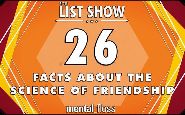 26 ข้อเท็จจริงเกี่ยวกับศาสตร์แห่งมิตรภาพที่คุณอาจไม่รู้