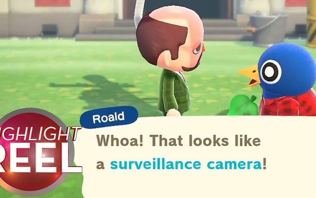 Jak szpiegować swoje Animal Crossing Town