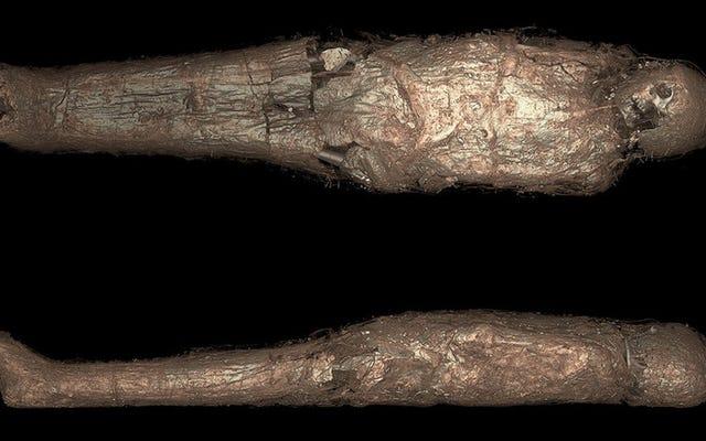 古代エジプトのミイラの分析は異常な泥の儀式を明らかにします