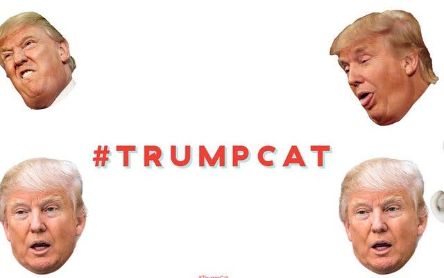 更新:おっと、私たちが書いた「トランプ猫」サイトはトロールのようです