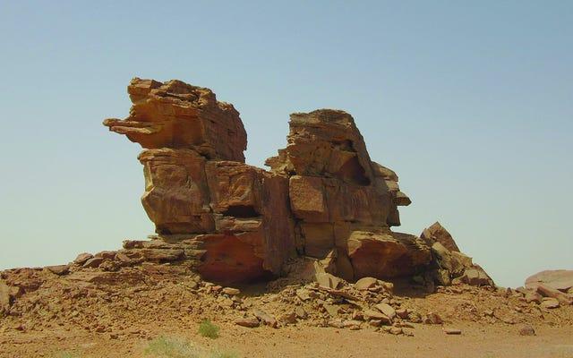 D'incroyables sculptures grandeur nature de chameaux et de chevaux découvertes en Arabie saoudite