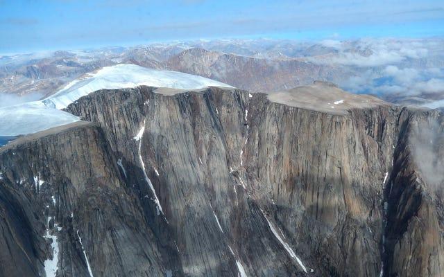 Starożytne rośliny ujawniają, że arktyczne lato nie było tak gorące od 115 000 lat