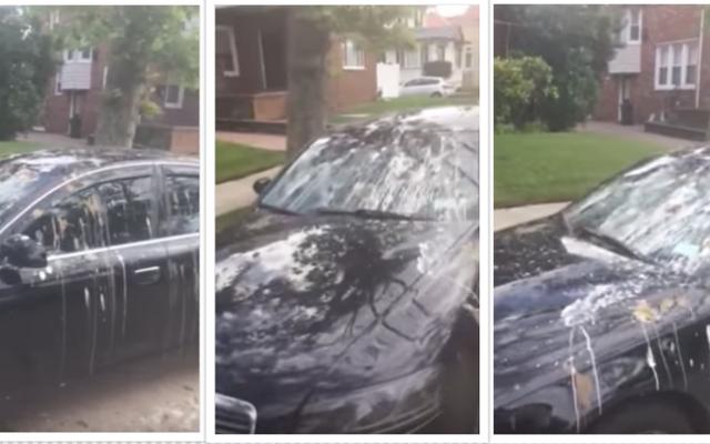 L'uomo scopre Audi intrisa di merda di uccelli