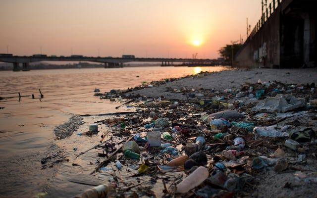「リオの水の状況は悲惨だと思う」とプロサーファーはその中で泳ぐことを余儀なくされたと言います