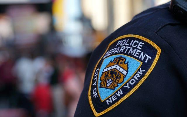 オンライン偏見で告発されたNYPDの差別禁止副官が停職後に引退