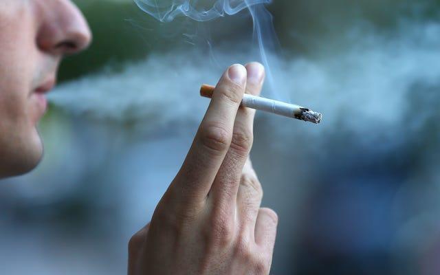 専門家パネルは、50歳から始まる肺がんの検査を受けるためにもっと多くの喫煙者を呼びかけています