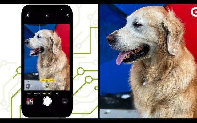 Come scattare le foto migliori sul tuo iPhone