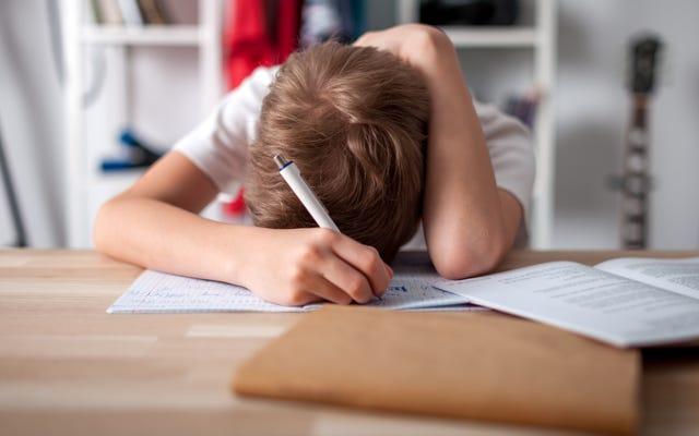 これが子供たちが「遠隔教育」に費やすべき時間です