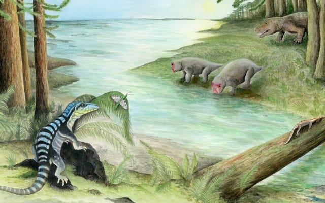 南極で発見された三畳紀爬虫類の珍しい化石