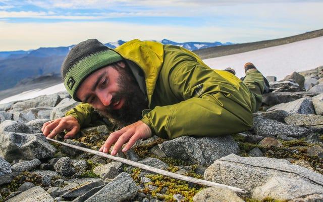 古代の狩猟遺物の山がノルウェーの氷のパッチから溶け出しました