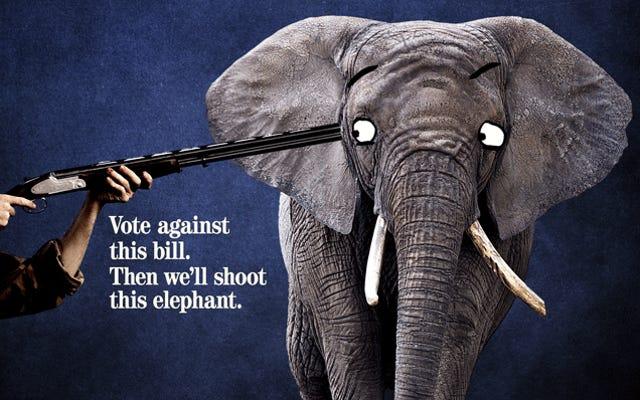 NRAは、ゾウを今すぐ救うことを目指しているグループを密かに支援し、後でゾウを殺します