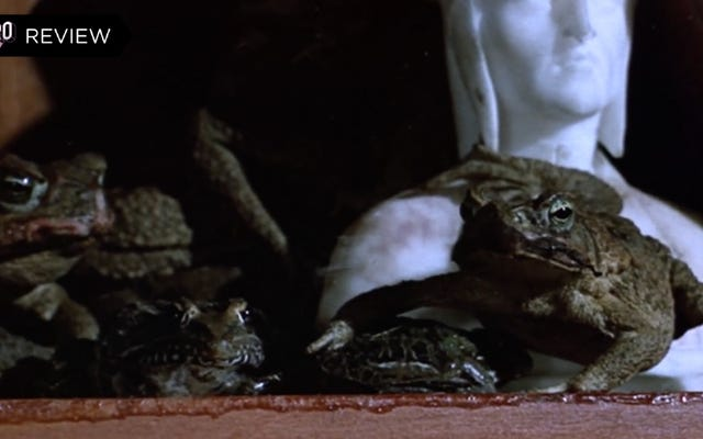 これまでに作られた最もスクイーズで不気味なカルトホラー映画の3つ