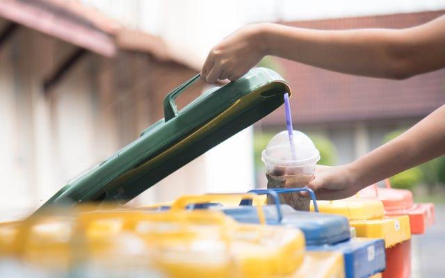 Quanto devono essere puliti i contenitori per alimenti se vuoi riciclarli?