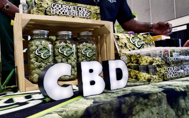 Co rodzice powinni wiedzieć o CBD