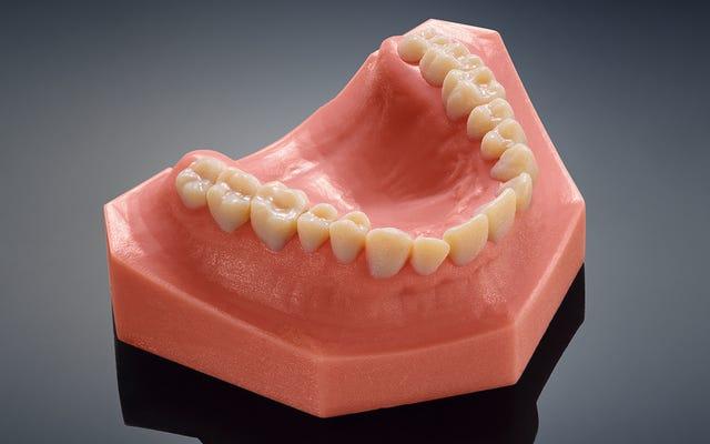 これらの恐ろしく本物の歯は、新しい歯科用3Dプリンターによって作られました