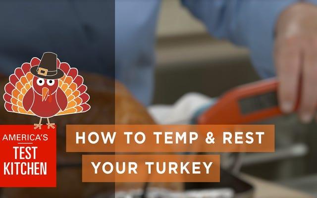 あなたのトルコを一時的に休ませるための正しい方法