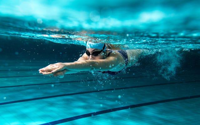 8月の水泳チャレンジはどうでしたか?