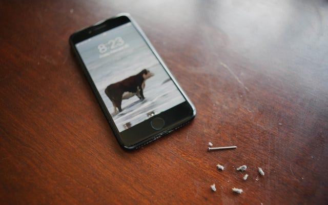 あなたのiPhoneのLightningポートがおそらくどれほど嫌なのか見てください