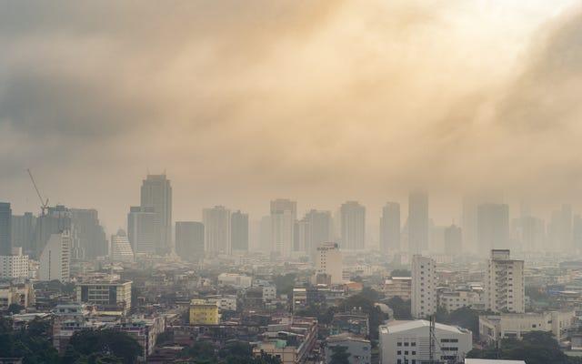 大気質の悪さがCOVID-19の死亡率にどのように影響するか
