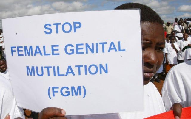 ミシガン州の裁判官は、連邦女性性器切除禁止は違憲であると裁定しました