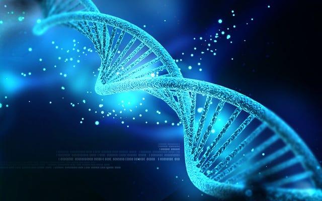 दुर्लभ जीन उत्परिवर्तन के कारण हमें लगता है कि अधिक रोग हो सकते हैं