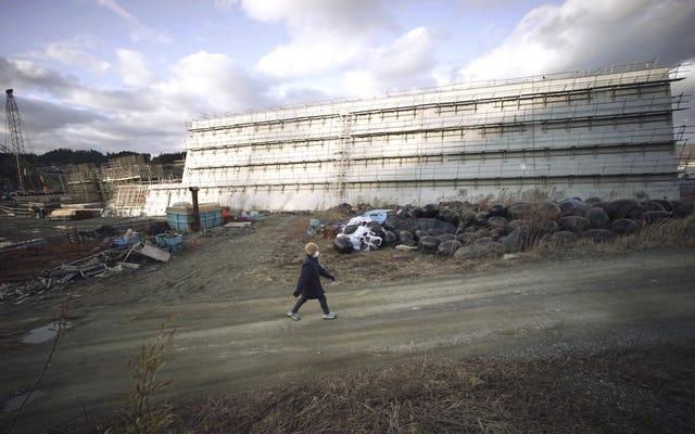 जापान में सुनामी के खिलाफ 400 किमी की महान दीवार आबादी को विभाजित करती है