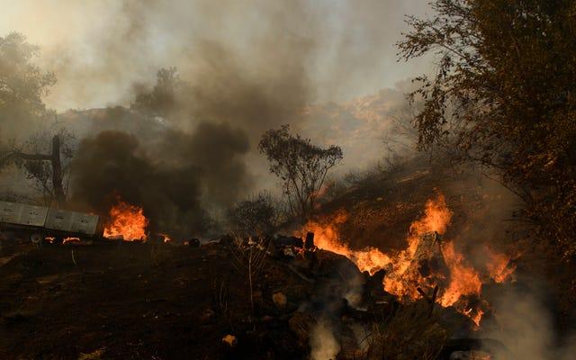 Yeşil Bir İyileşmeye Yatırım Yapmadıkça Dünya Yaklaşık 6 Derece Daha Sıcak Olacak