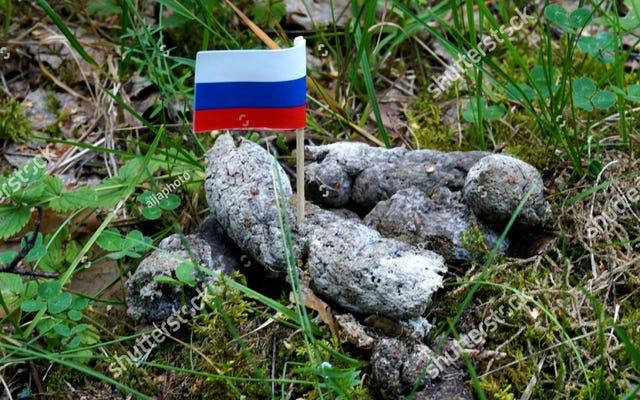 ロシアはDogshitのロシア国旗の写真でShutterstockのウェブサイトをブロックします