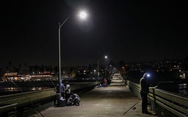 サンディエゴの不気味な「スマート」街路灯カメラをオフにすることはできません