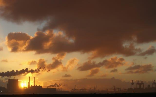 裁判所は世界を再形成する可能性のある画期的な気候の勝利を認める