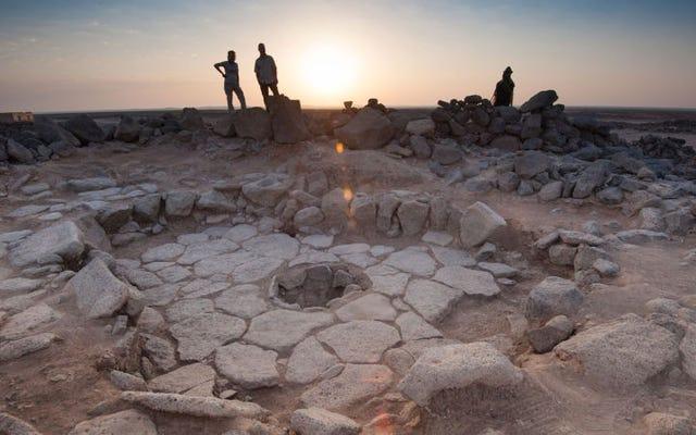 Penemuan roti panggang berusia 14.000 tahun menunjukkan bahwa kita dapat menambahkan roti ke dalam diet paleo