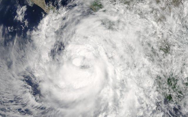 Mexico tự gồng mình lên khi cơn bão Newton đổ bộ