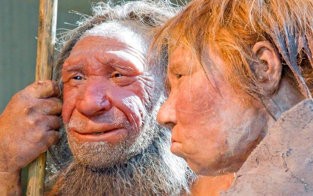 ネアンデルタール人は私たちのように親指を使わなかった、と新しい研究が示唆している