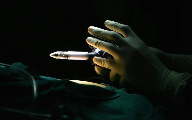 家族を始めている間に研修医を完了することの難しさは、女性を医学に引き留めています