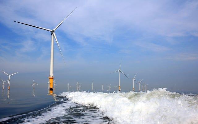 Самая большая в мире оффшорная ветряная электростанция только что открылась