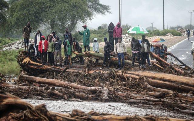 東アフリカの「前例のない」雨が気候緊急事態を垣間見る