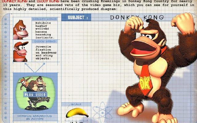 Cuối cùng một người nào đó đã thu thập tất cả các trò chơi Flash cũ của Nintendo vào một nơi