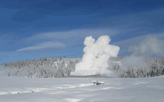 イエローストーンの気温が非常に低くなったため、間欠泉は沸騰したお湯の代わりに雪を吐き出しました