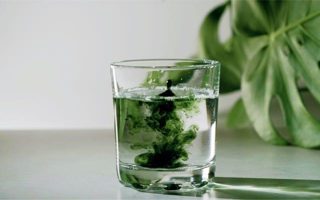 クロロフィル水がニキビの治療に役立つと期待すべきではない理由