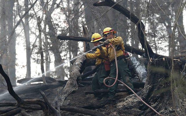Dos niños acusados por los incendios forestales de Tennessee que mataron a 14