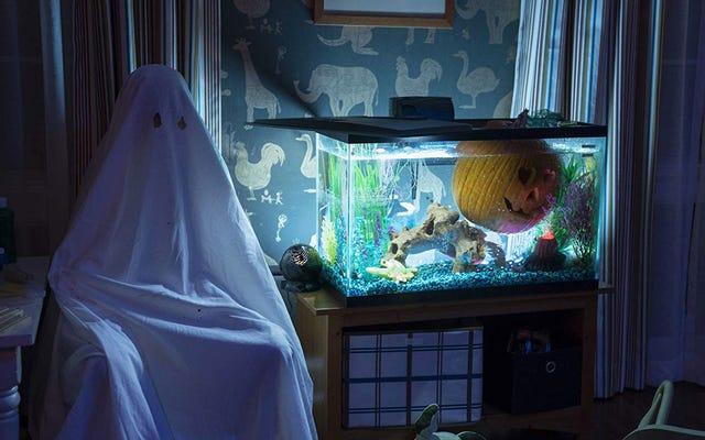 Новый Хэллоуин может быть более чувствительным, чем когда-либо, но он также и более жестоким