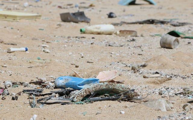 私たちは皆ゴミ島に住んでいます