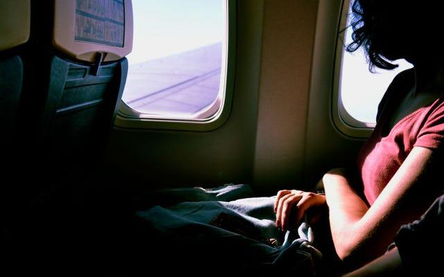 飛行機の座席にナンキンムシが蔓延している場合の対処方法